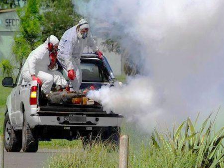 Fumigación de mosquitos